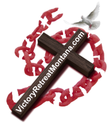 cropped-logo-vrm-updated-aug-21-2018-cross-and-broken-chain-only-cropped-red-brown-website-dove1.png