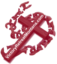 cropped-logo-vrm-updated-aug-21-2018-cross-and-broken-chain-only-cropped-red-website1.png