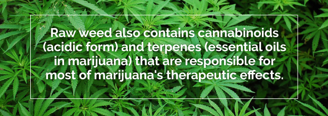 Do You Realize that you are Losing Around 99% of the Health Benefits of Marijuana When you Smoke or Cookit?