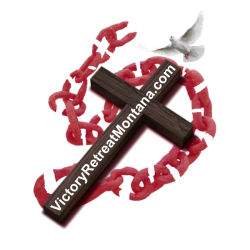 cropped-logo-vrm-updated-aug-21-2018-cross-and-broken-chain-only-cropped-red-brown-website-dove.png