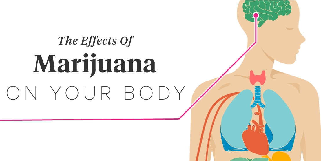 LATEST LEGIT STUDY: How marijuana harms your heart and blood pressure to bring you an earlydeath
