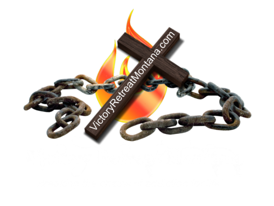 logo VRM with fire 3