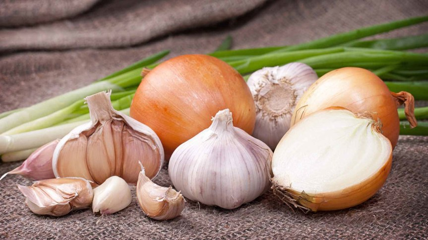 Onions and garlic could protect against cancer