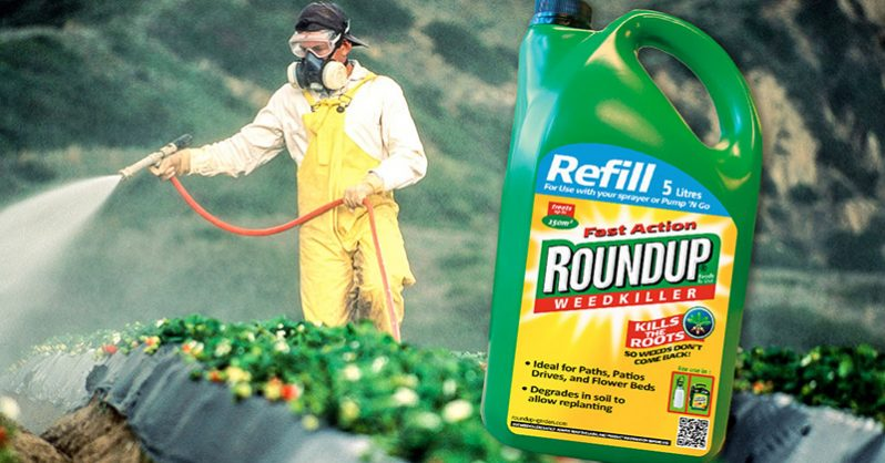 BREAKING: Roundup found in beer & wine samples (See the brands)