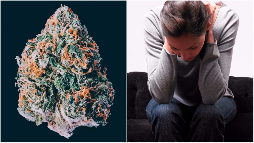 This Is Why Weed Makes Some People Anxious & Even Paranoid