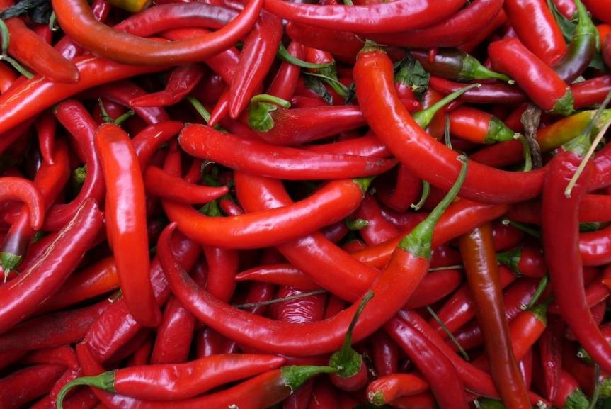 Why Cancer Hates Chilies