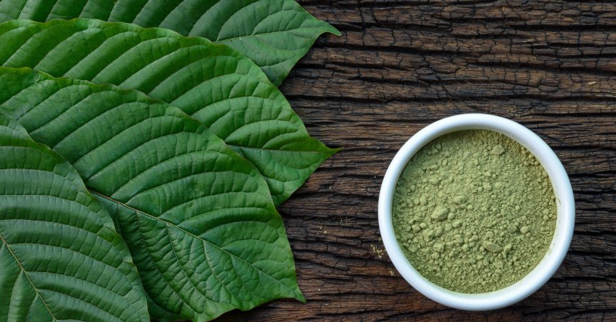 Are You Jumping from the Fire Of Opioids into the Frying Pan of Kratom?BEWARE!