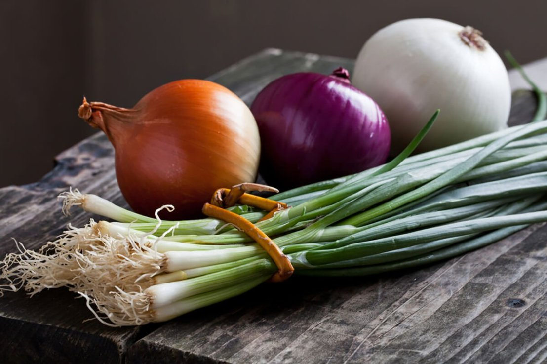 Are Leftover Onions Poisonous? Viral Warning Calls It A Sponge forBacteria.