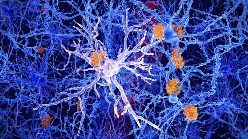 Psychiatric Drugs: Neurotoxins that Do More Harm thanGood