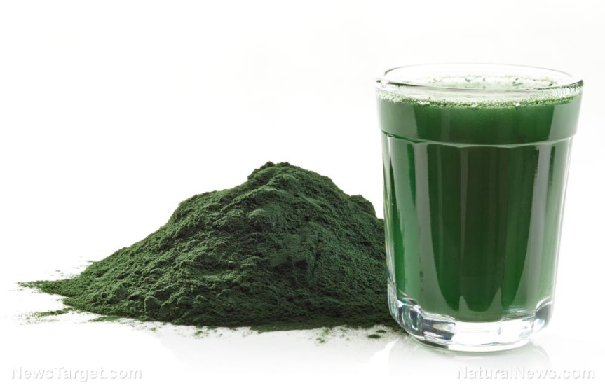 "Spirulina Found to Boost the Body's Type 1 Interferon Response to Fight RNA Viral Infections ""INCLUDING CORONAVIRUS,"" new science finds"